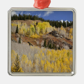 USA, Colorado, Gunnison National Forest, along Metal Ornament