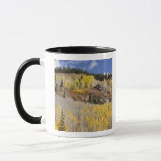 USA, Colorado, Gunnison National Forest, along Mug
