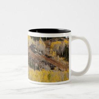 USA, Colorado, Gunnison National Forest, along Two-Tone Coffee Mug