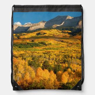 USA, Colorado, Gunnison National Forest Drawstring Bag