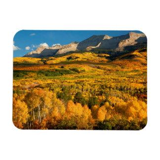 USA, Colorado, Gunnison National Forest Magnet
