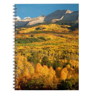 USA, Colorado, Gunnison National Forest Notebook