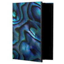 USA, Colorado, Lafayette. Abalone shell Case For iPad Air