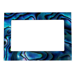 USA, Colorado, Lafayette. Abalone shell Magnetic Picture Frame