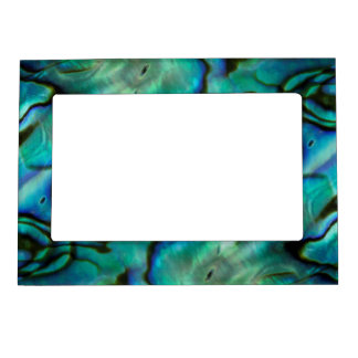 USA, Colorado, Lafayette. Abalone shell montage Magnetic Frame