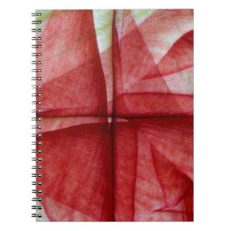 USA, Colorado, Lafayette. Amaryllis montage Notebook
