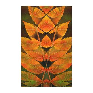 USA, Colorado, Lafayette. Autumn sumac montage Canvas Print