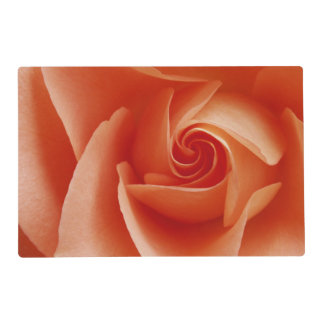USA, Colorado, Lafayette. Peach rose close-up Placemat
