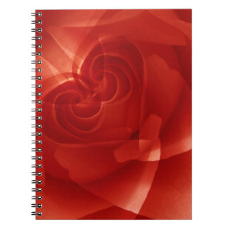USA, Colorado, Lafayette. Red rose montage Notebook