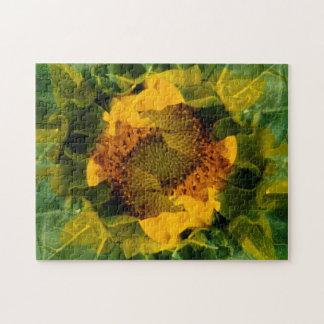 USA, Colorado, Lafayette. Sunflower montage Jigsaw Puzzle