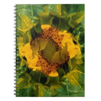 USA, Colorado, Lafayette. Sunflower montage Notebook