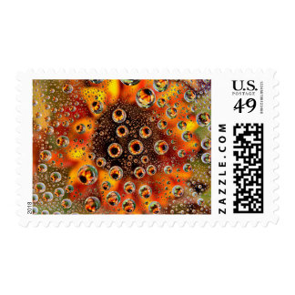 USA, Colorado, Lafayette. Water bubbles on glass 1 Stamp