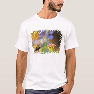 USA, Colorado, Lake County, Leadville. Female T-Shirt