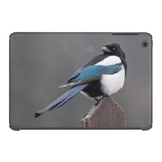 USA, Colorado, Magpie In Estes Park iPad Mini Retina Cover