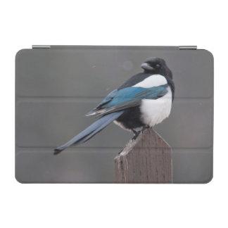 USA, Colorado, Magpie In Estes Park iPad Mini Cover