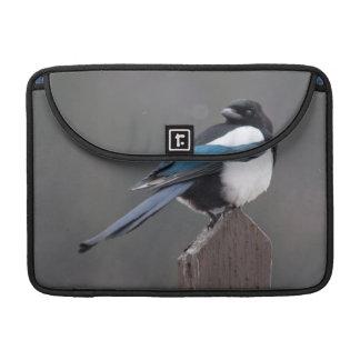 USA, Colorado, Magpie In Estes Park MacBook Pro Sleeves