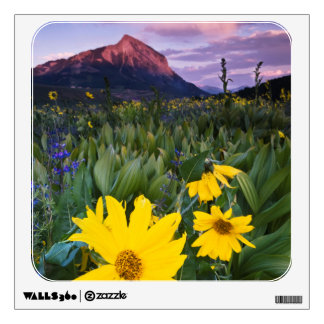 USA, Colorado, Mt. Crested Butte Wall Decal