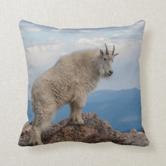 USA, Colorado, Mt. Evans. Mountain Goat Stands Throw Pillow