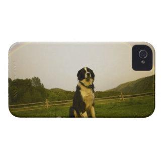 USA, Colorado, New Castle iPhone 4 Case-Mate Case