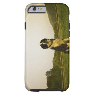 USA, Colorado, New Castle Tough iPhone 6 Case
