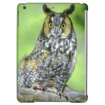 USA, Colorado. Portrait of long-eared owl iPad Air Cases