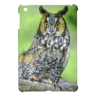 USA, Colorado. Portrait of long-eared owl iPad Mini Cases