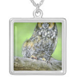 USA, Colorado. Portrait of long-eared owl Silver Plated Necklace