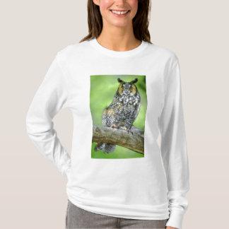 USA, Colorado. Portrait of long-eared owl T-Shirt