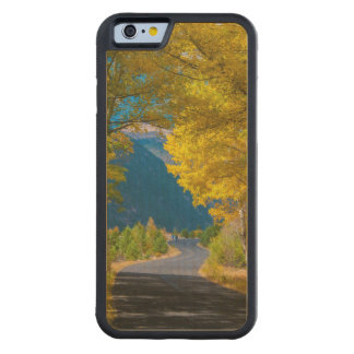 USA, Colorado. Road Flanked By Aspens Carved® Maple iPhone 6 Bumper Case