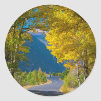 USA, Colorado. Road Flanked By Aspens Classic Round Sticker