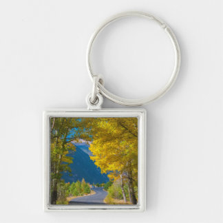 USA, Colorado. Road Flanked By Aspens Key Chain