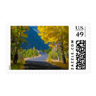 USA, Colorado. Road Flanked By Aspens Postage
