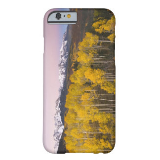 USA, Colorado, Rocky Mountains.  Dawn in the San Barely There iPhone 6 Case