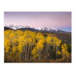 USA, Colorado, Rocky Mountains.  Dawn in the San Postcard