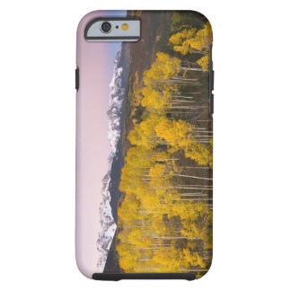 USA, Colorado, Rocky Mountains.  Dawn in the San Tough iPhone 6 Case