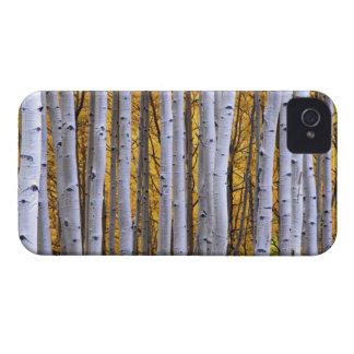 USA, Colorado, Rocky Mountains.  Intimate scene Case-Mate iPhone 4 Case