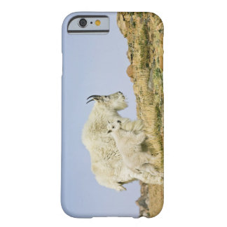 USA, Colorado, Rocky Mountains, Mount Evans, Barely There iPhone 6 Case