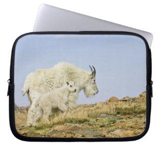 USA, Colorado, Rocky Mountains, Mount Evans, Computer Sleeve
