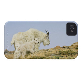 USA, Colorado, Rocky Mountains, Mount Evans, iPhone 4 Case-Mate Case
