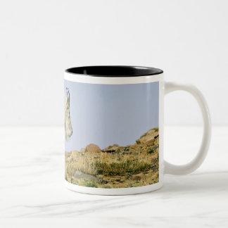 USA, Colorado, Rocky Mountains, Mount Evans, Coffee Mugs