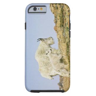 USA, Colorado, Rocky Mountains, Mount Evans, Tough iPhone 6 Case