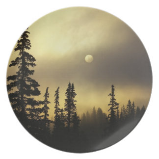 USA, Colorado, San Isabel National Forest. Dinner Plate