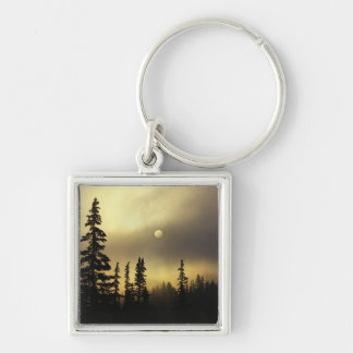 USA, Colorado, San Isabel National Forest. Keychain