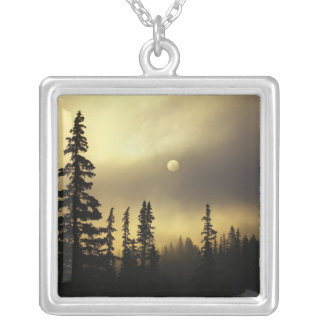 USA, Colorado, San Isabel National Forest. Square Pendant Necklace