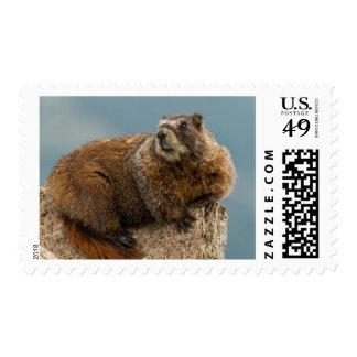 USA, Colorado, San Juan Mountains 2 Stamp