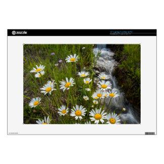 "USA, Colorado, San Juan Mountains. Daisies 15"" Laptop Skin"