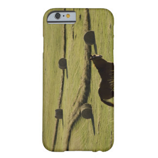 USA, Colorado, Steamboat Springs, hay rolls and Barely There iPhone 6 Case