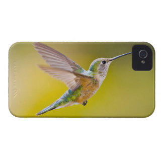 USA, Colorado, Summit County, Heeney. Side view Case-Mate iPhone 4 Cases
