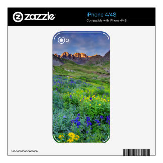 USA, Colorado. Sunrise On Wildflowers Decal For The iPhone 4S