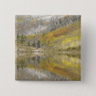 USA, Colorado, White River National Forest, 2 Button